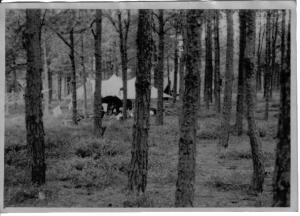 042 tent in bos 1949