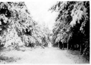 044 winter op het terrein
